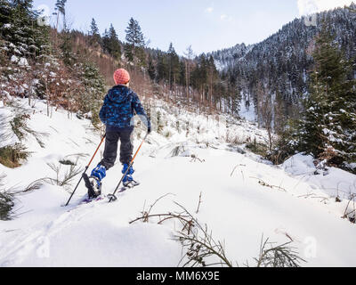 Rear view of a Girl ski walking in snowy Black Forest, Germany, Europe - Stock Image