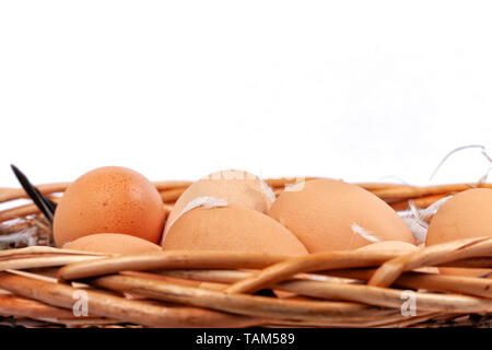 A wicker basket full of homemade organic eggs isolated on white background. - Stock Image
