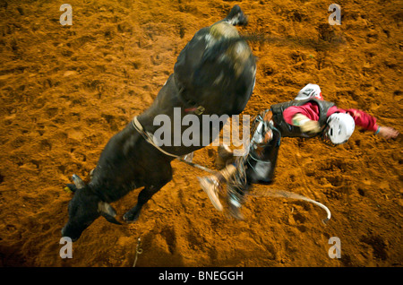 Rodeo member of PRCA jumping from bull at Smalltown in Bridgeport Texas, USA - Stock Image