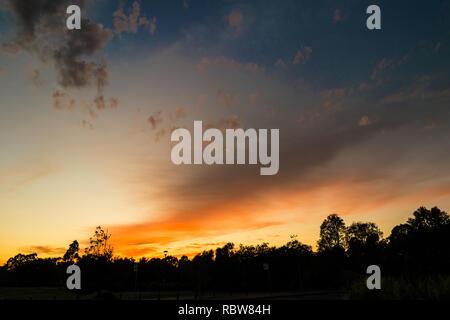 wispy dawn clouds - Stock Image