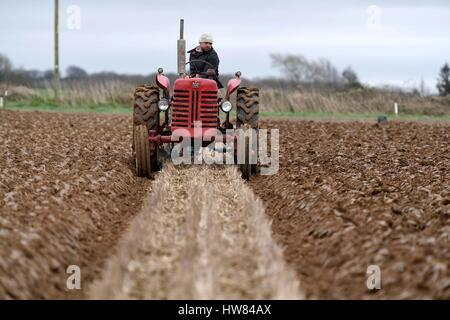 Tractor Ploughing match, vintage tractors, Dorset, UK - Stock Image