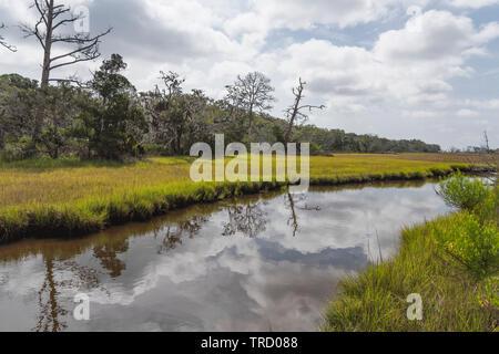 Jekyll Island Clam Creek Brunswick Georgia, USA - Stock Image