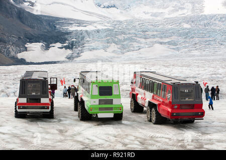 Tourist ice buggy's on the Athabasca glacier which is receding extremely rapidly and has lost over 60% of its ice mass in less than 150 years. Canadian Rockies. - Stock Image