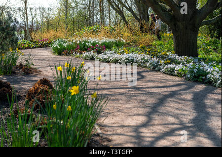 Royal Horticultural Society, RHS , Hyde Hall, spring flower borders. On a sunny day and back lit. With a couple enjoying the tranquil peace. - Stock Image