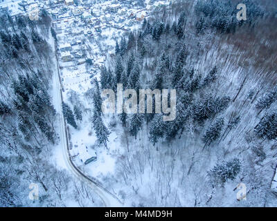 Aerial top view of snowy forest and detached houses in winter - Stock Image