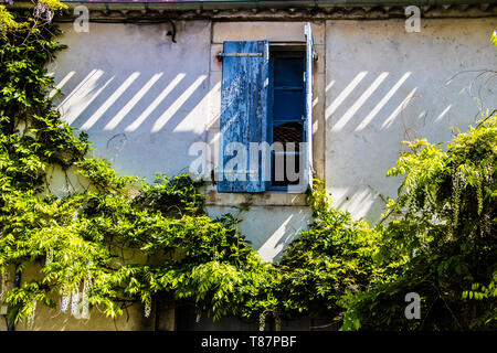 France, Provence. Typical old house, open window with the blue shutters surrounded a green plants. - Stock Image