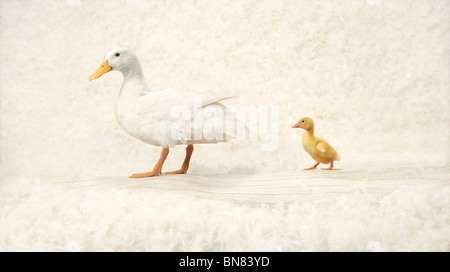 Is it a long way ? - Stock Image