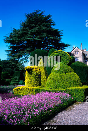 Classical topary garden with Box hedging and flower border - Stock Image