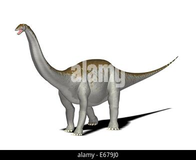Dinosaurier Apatosaurus / dinosaur Apatosaurus - Stock Image