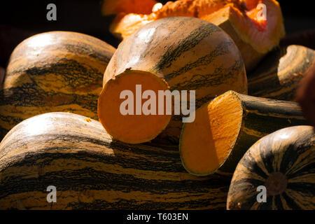 Zapallo o calabaza, fruto de origen americano difundido en la gastronomía de todo el mundo - Stock Image