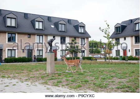 Zandvoort The Netherlands 12th July 2018 Just meters away from the end of the railway platforms at Zandvoort Fallow Deer (Dama dama) graze at the sidi - Stock Image