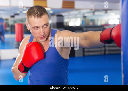 Adult sport male is training with punching bag in box gym - Stock Image