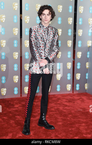 London, UK. 10th Feb, 2019. LONDON, UK. February 10, 2019: Timothee Chalamet arriving for the BAFTA Film Awards 2019 at the Royal Albert Hall, London. Picture: Steve Vas/Featureflash Credit: Paul Smith/Alamy Live News - Stock Image