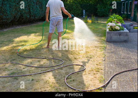 A man is spraying his lawn during a very dry summer in the Netherlands - Stock Image