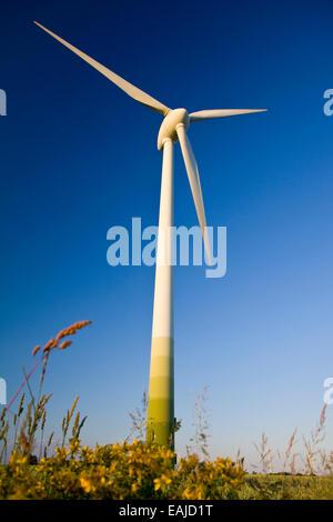Windmills against a blue sky, alternative energy source - Stock Image