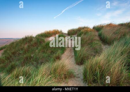 Sand dunes on a clear summer's morning at sunrise - Stock Image