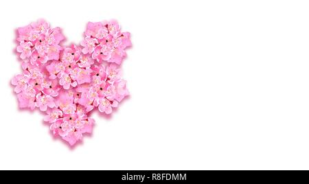 St. Valentine s Day. Decorative sakura flowers, a bouquet in the form of a heart, design elements. Can be used for cards, invitations, posters, print design. illustration - Stock Image