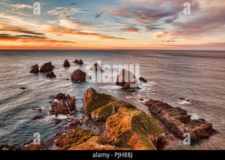 Rocks and sea stacks at Nugget Point Otago New Zealand, sunrise. - Stock Image