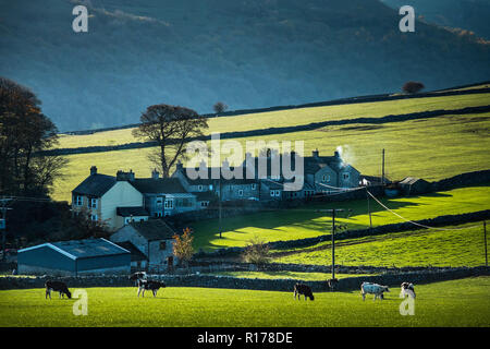 Cottages near Cressbrook in the Derbyshire Peak District. - Stock Image