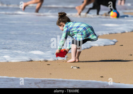 A toddler trying to fill her bucket with seawater without getting her feet wet on Fistral in Newquay in Cornwall. - Stock Image