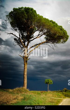Looming storm over San Sevino, Tuscany - Stock Image