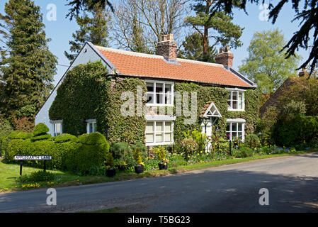 House in the village of Bainton, East Yorkshire, England UK - Stock Image