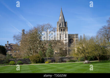 The spire of Christ Church Cathedral and hte Master's Garden, Oxford - Stock Image