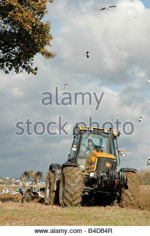 Ploughing on the West Sussex Chichester Coastal Plain November - Stock Image