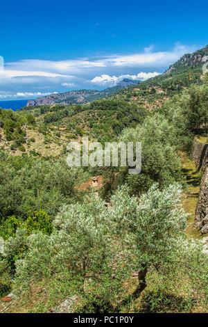 Landscape near Dela - Stock Image