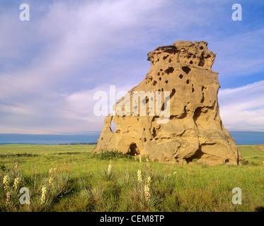 Medicine Rocks, pillars of sandstone rise above the prairie at Medicine Rocks State Park, north of Ekalaka, Montana, - Stock Image