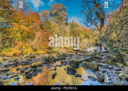 Yorkshire Dales National Park autumn landscape, vivid autumn colours at Cotter Force Waterfall, Hawes, Wensleydale, UK - Stock Image