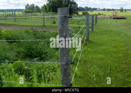Electric fence separating fields on a farm - Stock Image
