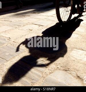 Shadow of a bicycle - Stock Image
