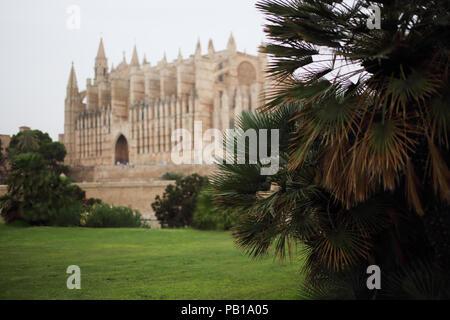 The cathedral in Palma de Mallorca - Stock Image