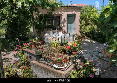 A Garden Shed in Skopelos, Northern Sporades Greece. - Stock Image