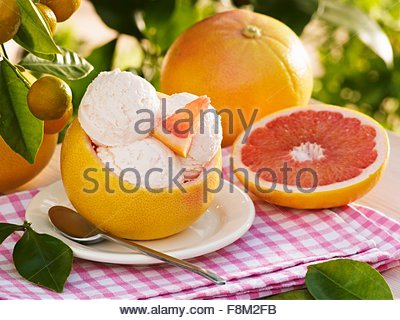 Pink grapefruit ice cream in hollowed-out grapefruit shell - Stock Image