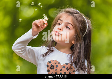 Outdoor portrait of  adorable four years old cute little girl blowing a dandelion wild flower at meadow in a sunny day - Stock Image