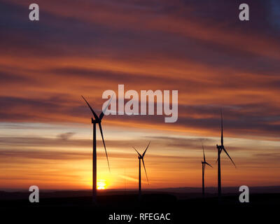 Wind farm at dawn, Monynut edge, Lammermuir hills near Dunbar, Scotland - Stock Image