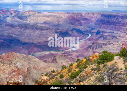 Grand Canyon National Park, in Arizona, USA - Stock Image