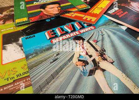A collection of Elvis Presley music albums, records., lp's spread out. - Stock Image