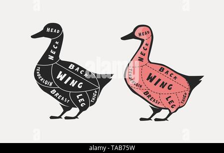 Diagram guide for cutting meat, butcher shop. Duck vector - Stock Image