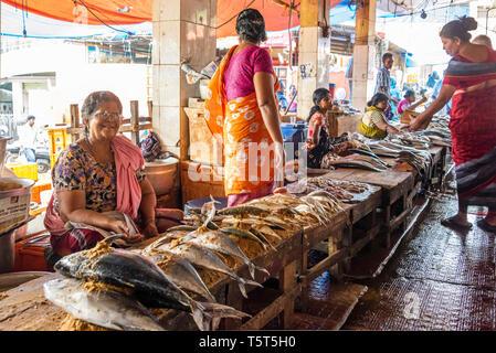 Horizontal view of the fish market at Palayam in Trivandrum, Kerala, India. - Stock Image
