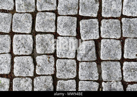Close-up of a path paved with square granite setts - Stock Image