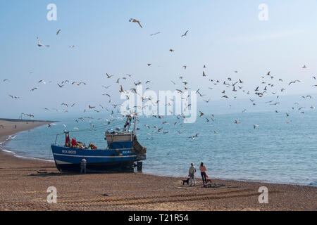 Hastings, East Sussex, UK. Dog walkers watch Hastings fishing boat bringing in the catch, in the early morning mist on the Old Town Stade fishermen's beach. Hastings has the largest beach-launched commercial fishing fleet in Britain. - Stock Image