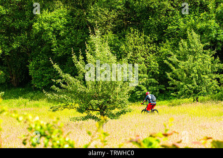 A ride through the reclaimed mining land turned into a wonder woodland park. - Stock Image