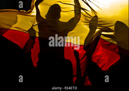fans celebrate behind germany flag - Stock Image