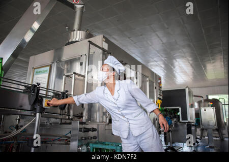 Des ouvrières dans une usine ou l'on met en bouteille une eau de source le 13 octobre 2012. Women workers in - Stock Image