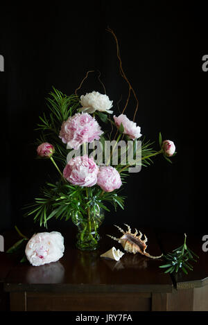 Peonies in a Dutch Roemer style wine glass in natural light arranged with Lambdis scorpius and Thatcheria mirabilis shells and podopcarpus on old wood - Stock Image