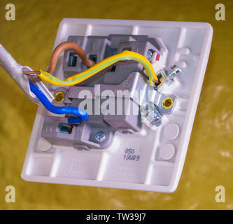 Closeup of connections for blue, brown and green/yellow wires, screwed into their terminals, behind the on/off switch for a UK Standard appliance. - Stock Image