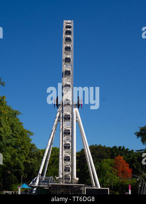 The Wheel Of Brisbane Observation Wheel - Stock Image